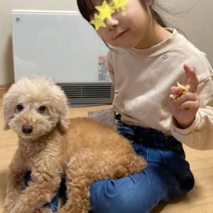 ペット保険♡