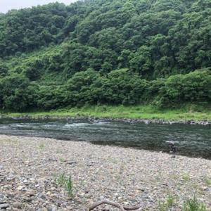 今年もまた厳しい鮎釣りが始まった・・in那珂川