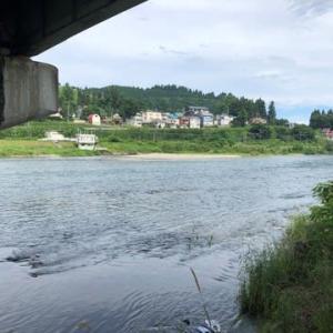 これからの魚野川に期待