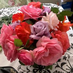 毎年恒例の、菜園&薔薇づくり