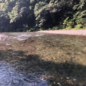 上手な人は20以上釣れるらしい神流川