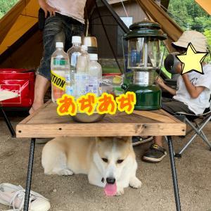 夏のキャンプ!涼しい場所探し