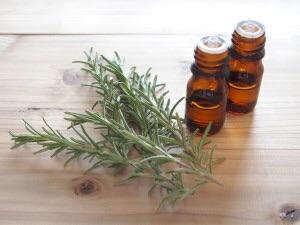免疫力が落ちてるときは、【ティートゥリー】の香りで早めに対策!