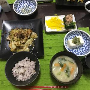 1/16木曜 サバ缶とキャベツの炒め煮