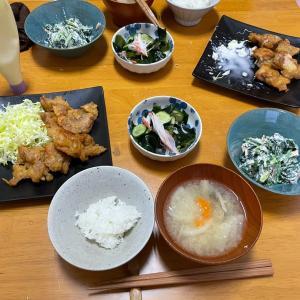 4/16金曜 Oisix  鶏の唐揚げ