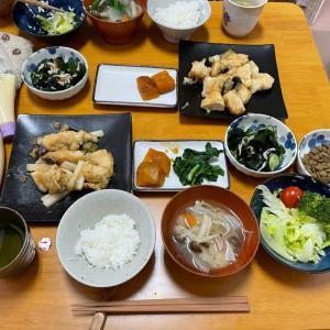 4/24土曜 Oisix  鶏肉のみぞれ煮