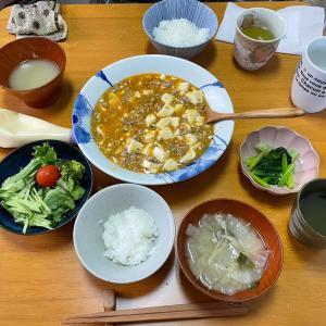 4/27火曜 麻婆豆腐