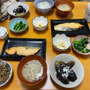 5/5水曜 シャケの西京焼き