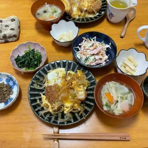 5/8土曜 カツ丼