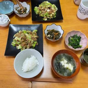 5/11火曜 肉味噌キャベツ