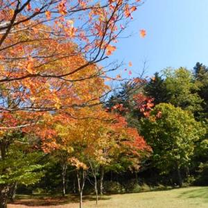 福原山荘の紅葉