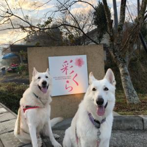 九州旅行2018 〜3日目 お宿編〜