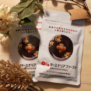 【体験記】糖脂にターミナリアファースト プロフェッショナル3