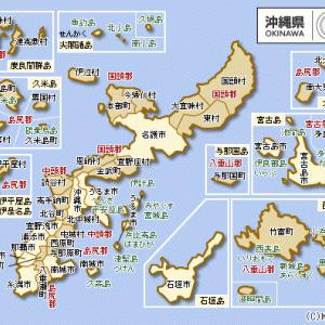 狂人の頭の中-『沖縄県知事選 玉城デニー氏 初当選』