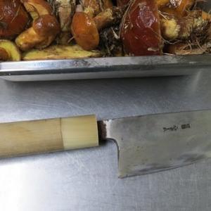 出刃包丁を持ってキノコ採り。