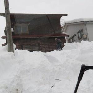 排雪の助っ人