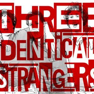まったく同じ3人の他人(同じ遺伝子の3人の他人)