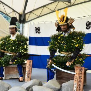 菊池市 菊人形・菊まつりが開催されています。(2019年速報)