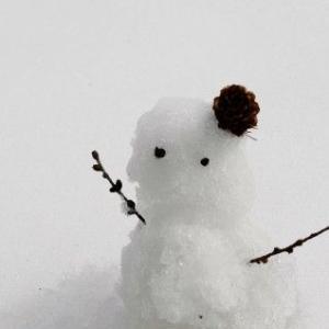 暴風雪警報が出てる