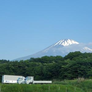 仕事中ですが、天気が良いので遠回りしちゃいました!静岡県~神奈川県へ 車窓動画