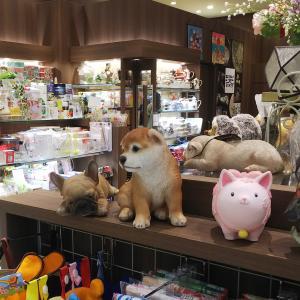 柴犬とフレンチブルドッグ 陶器の犬の置物に魅了!!
