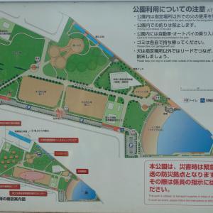 ゆったりとした時間を過ごす 東扇島東公園 川崎市