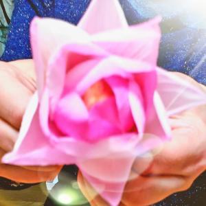 咲かせて下さいました(仏花)①・・・