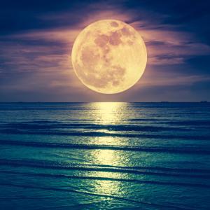【明日はパワーのある蠍座満月の日】ドキドキ・ワクワクするような冒険を願い叶えよう!