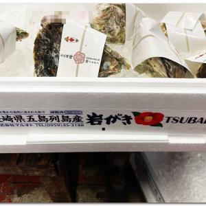 長崎県五島列島産岩がき 〜TSUBAKI〜
