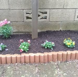 最近の息子くんは・・・。〜花壇に花を植えました〜