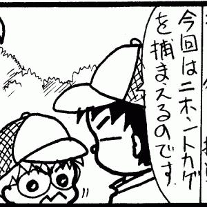 札幌の山にはマムシがいるぞ!(札幌じゃなくてもいるけど)