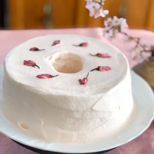 桜色のシフォンケーキ♪
