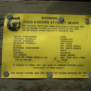 キャンプ地でのクマに襲われない対策を知っておこう!