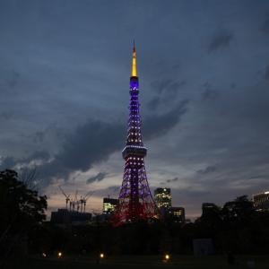 点灯時間は約1時間!6月藤色の東京タワーを見に行った話