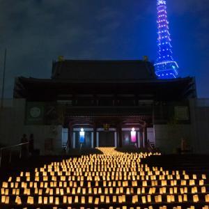 増上寺和紙キャンドルナイトと7月海色の東京タワー