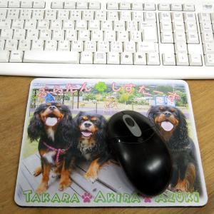 うちの子画像で作る「マウスパッド」♪
