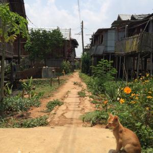 ミャンマー人の生き方から学ぶ