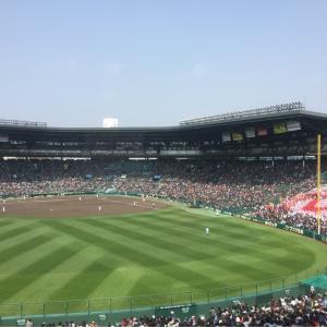 春のセンバツ高校野球