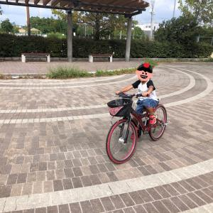2238&1532 NEW自転車