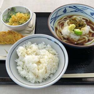 「丸亀製麺 コーナン堺店」-61 石津  夏うどん!青唐おろしぶっかけ 冷♪  210715