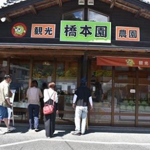 09/06 大人の遠足 予告!