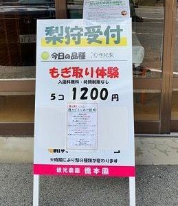 09/06  大人の遠足【観光農園 橋本園 編】