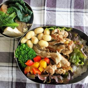 豚肉のねぎ塩焼き と おかずけんちん煮。