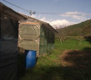 手作り温室の屋根の修繕
