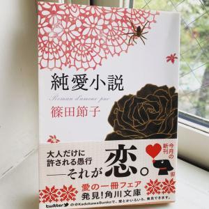 読書 『純愛小説』