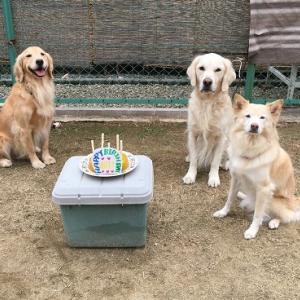 1月17日(金)お誕生日おめでとう!