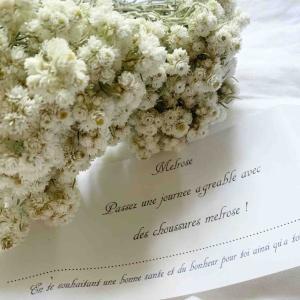大好きな白い小花と嬉しすぎるニュース*