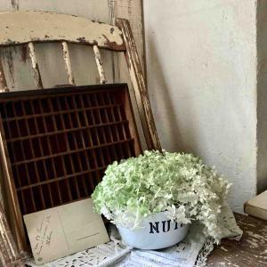 新居リノベ~キッチン壁の漆喰塗り*その1*