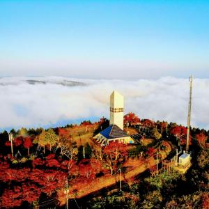 幻の天空のタワーから見る秋の絶景!【広島県神石高原町】