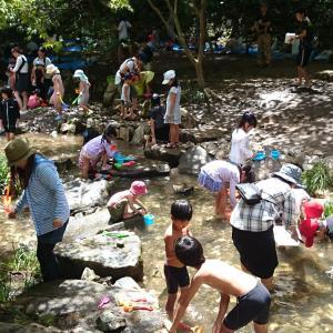 全国人気NO1の川遊びスポット水辺公園がオープンしますよ~♪【広島県神石高原町】